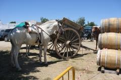 II Feria del Caballo 2009