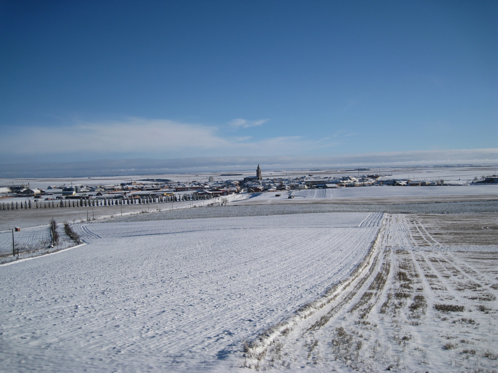 Nava nevada 2008